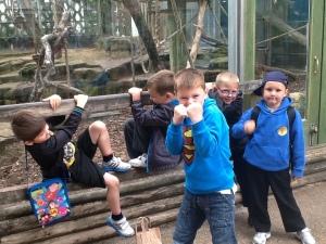 Bristol zoo 029